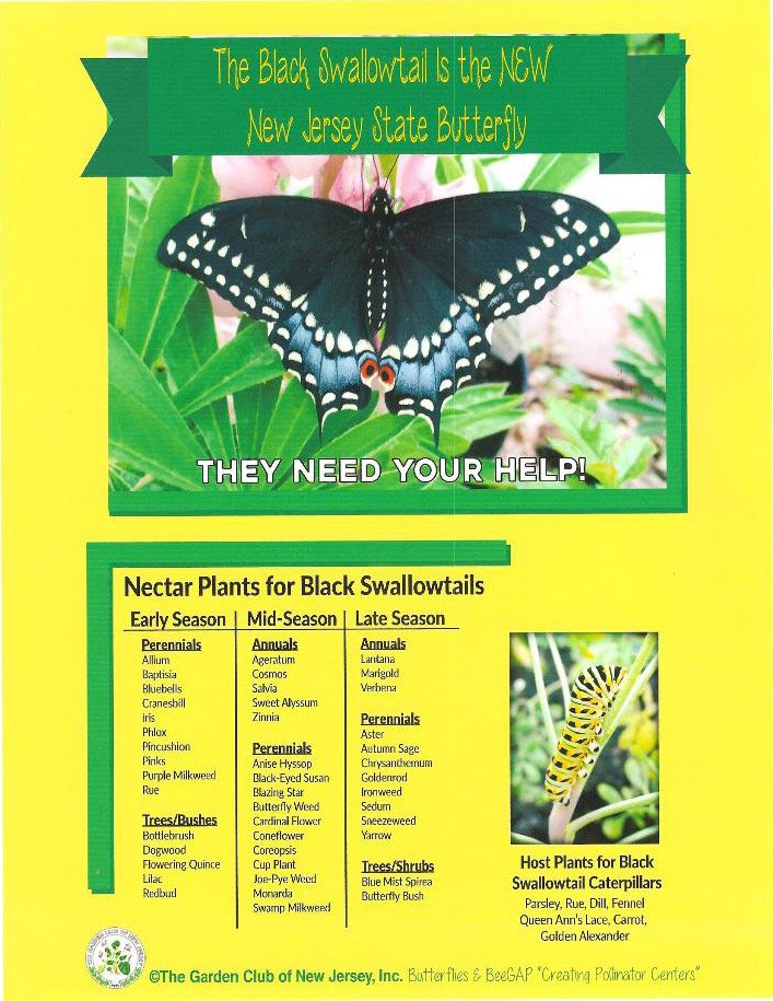 Black Swallowtail Butterfly Signage